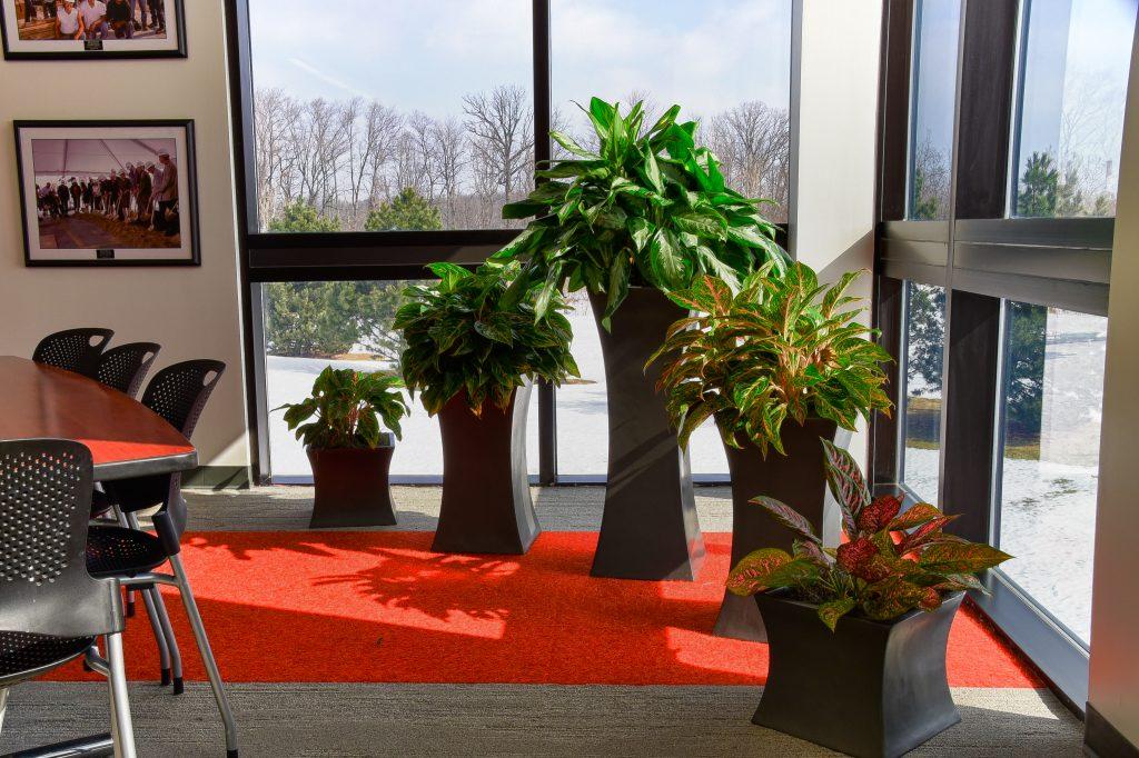 Botanicus Symmetry Planters
