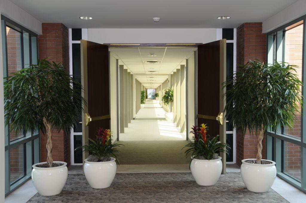 Interiorscape Ideas Botanicus