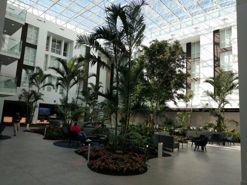 Large Trees and Plants - Botanicus
