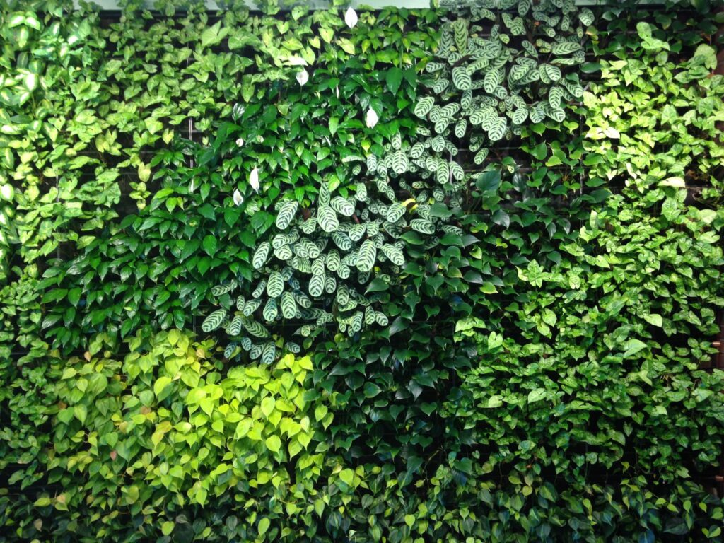 MidTown Tower 280 lobby green wall Rochester,NY