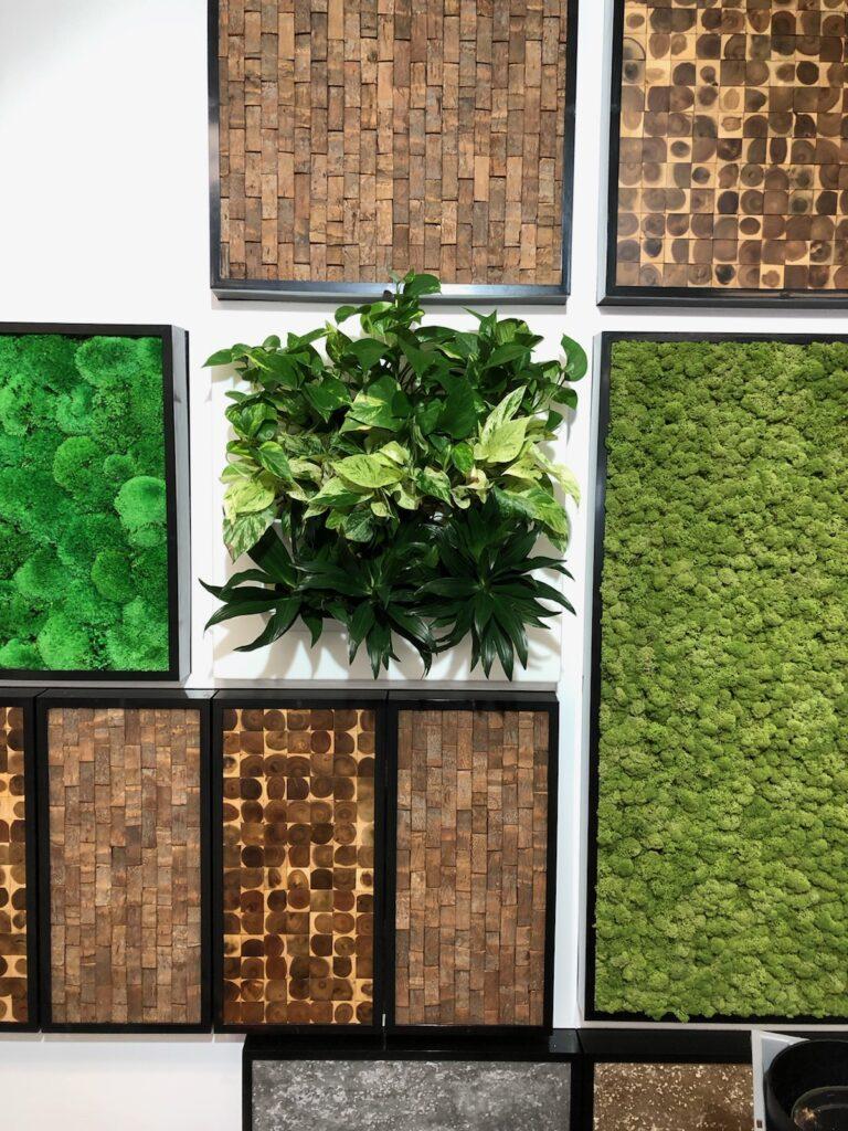 Moss Wall Art Green Design Patterns