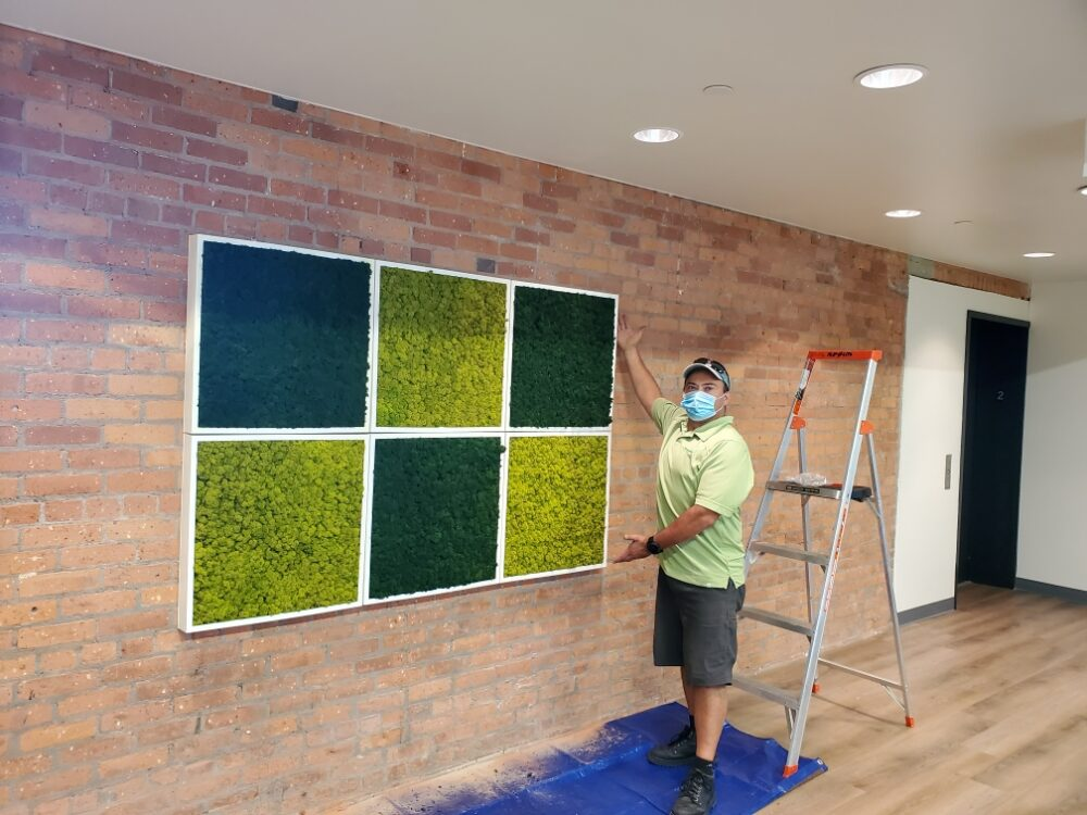 Moss Wall Live