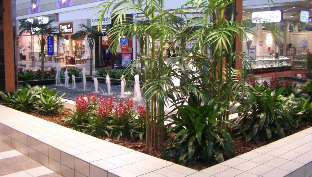 Designing for Plants, indoor plant, interior landscape